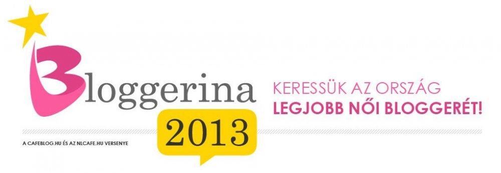 Legyél te 2013 Bloggerinája!